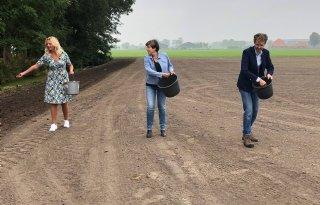 Noord-Holland subsidieert inzaaien kruidenrijk grasland
