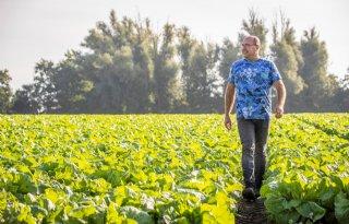 Vollegrondsgroenteteler: 'Alles begint met een gezonde bodem'