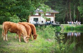Kritische vragen over transitie Nationaal Park De Meinweg