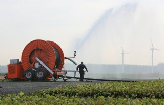 Europese Rekenkamer: boeren gebruiken te veel water