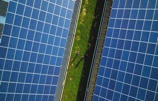 Dit kunnen agrariërs verdienen met zonnepanelen