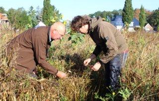 Monitor meet effecten op biodiversiteit bij Drentse boer