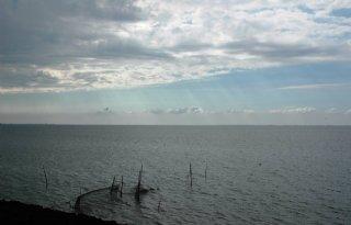 Denktank: geen vergunning mogelijk voor gaswinning Waddenzee