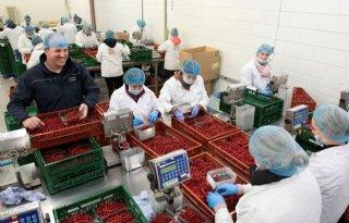 Bayer ziet kansen voor versnelde verduurzaming als Europa ruimte geeft