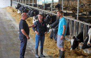 Gezonde veestapel maakt melkveebedrijf in Berlicum behapbaar