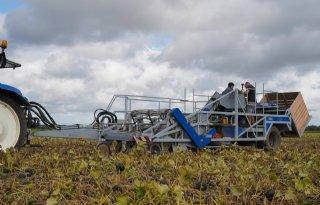 Ondernemers ontwikkelen één oogstmachine voor vier gewassen