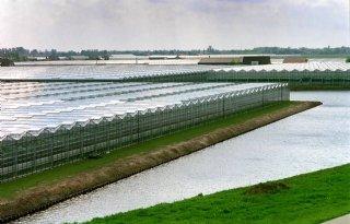 Forse verhoging verzekering glastuinbouw