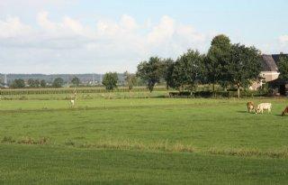 Onteigening grond hoogwatergeul dreigt