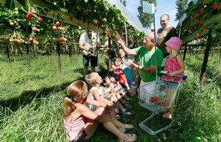 35.000 bezoekers open dagen AH-boeren