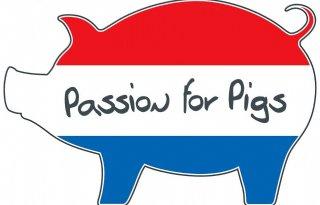 Autostickers voor promotie varkens