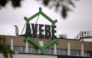 Meer+winst+voor+Avebe