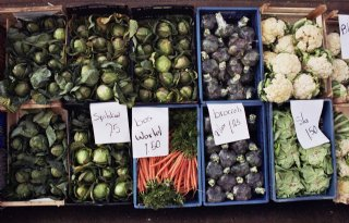 Controle+groente+en+fruit+op+orde