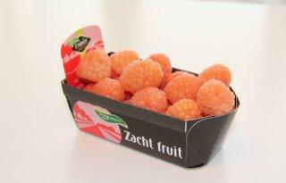Oranje+framboos+voor+voetbalfan