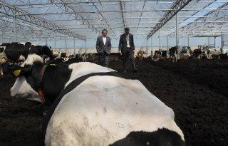 Bleker+leidt+regiegroep+duurzame+veehouderij