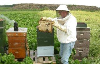 Residu+weinig+effect+bijensterfte