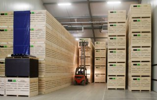 1,15 miljoen ton aardappelen op voorraad