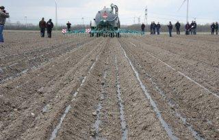 Bemestingssystemen+aardappelland+belicht