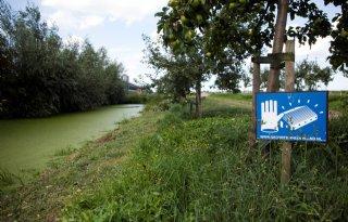 Q-koorts in Drenthe