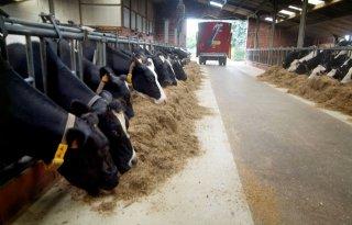 Nederland onder EU-fosfaat grens