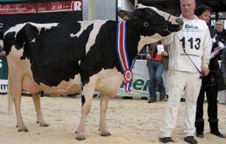 Sd+Janice+%E2%80%98koningin%E2%80%99+van+Drenthe