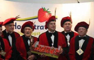 Eerste Belgische aardbeien € 399