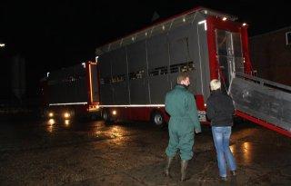 Veetransporteur Strijk bedreigd om foto