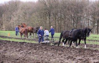 Deelnemers+ploegen+met+paarden+gezocht