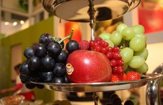 Kennisdag+Fruitteelt