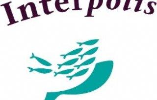 Interpolis: vooral overgelopen goten