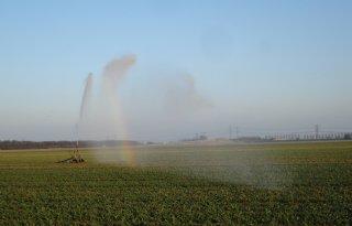 Brabantse Delta breidt onttrekkingsverbod uit