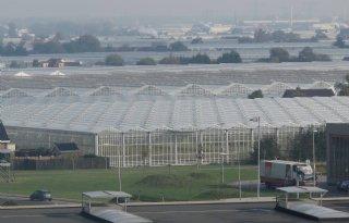 Rotterdamse havenwarmte voor glastuinbouw
