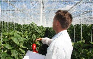Ruim+65+miljoen+euro+agro%2Dtopsectoren