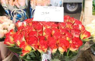 %27Eerlijke+rozen%27+voor+minister+Ploumen