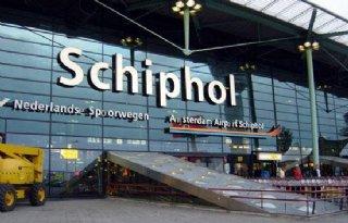 Groen+licht+aanpak+ganzen+Schiphol