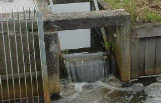 Miljoenen+uit+Deltafonds+voor+zoet+water