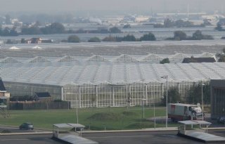 Warmte+haven+Rotterdam+kans+glastuinbouw