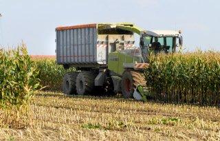 Bio%2Denergie+levert+extra+werkgelegenheid