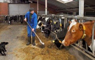 Zoeken naar goedkope lening jonge boer