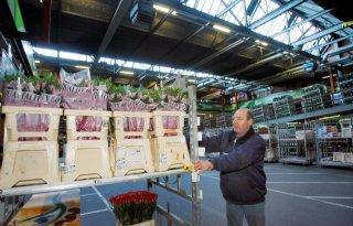 Loonstijging+groothandel+bloemen+en+planten