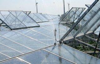 WUR+Glastuinbouw+actief+in+Australi%C3%AB