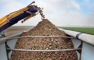 25 procent aardappelen vrij beschikbaar