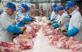 Vleesproductie herstelt na 2013