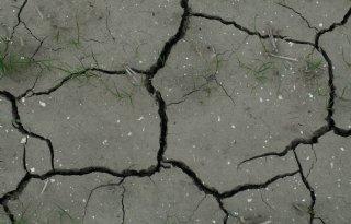 %27Liever+betere+grond+dan+meer+hectares%27