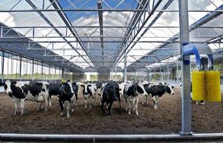 Geld+voor+13+duurzame+veeprojecten