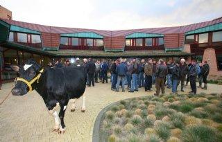 Texels+protest+tegen+bevriezen+stallenbouw