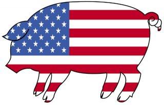 VS mag levende varkens naar EU exporteren