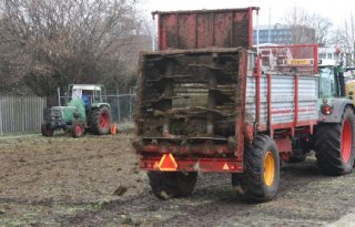 Koeienmest voor tuin voedselbank Almelo