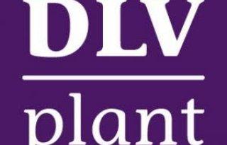 DLV+Plant+en+ZLTO+werken+nauwer+samen