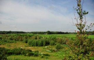 Alleen+bemest+natuurland+voor+derogatie