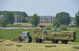Landbouwvisie+Utrecht+nog+vrijblijvend